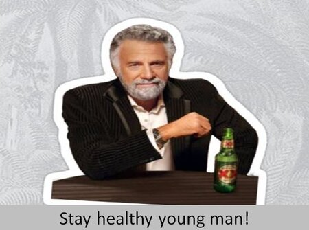 Dos Equis_Anzalone.JPG