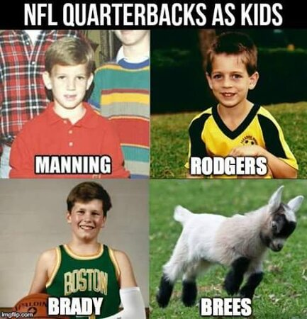 Brees is the GOAT.JPG